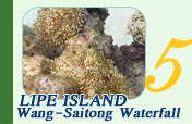 Lipe Island and WangSaitong Waterfall